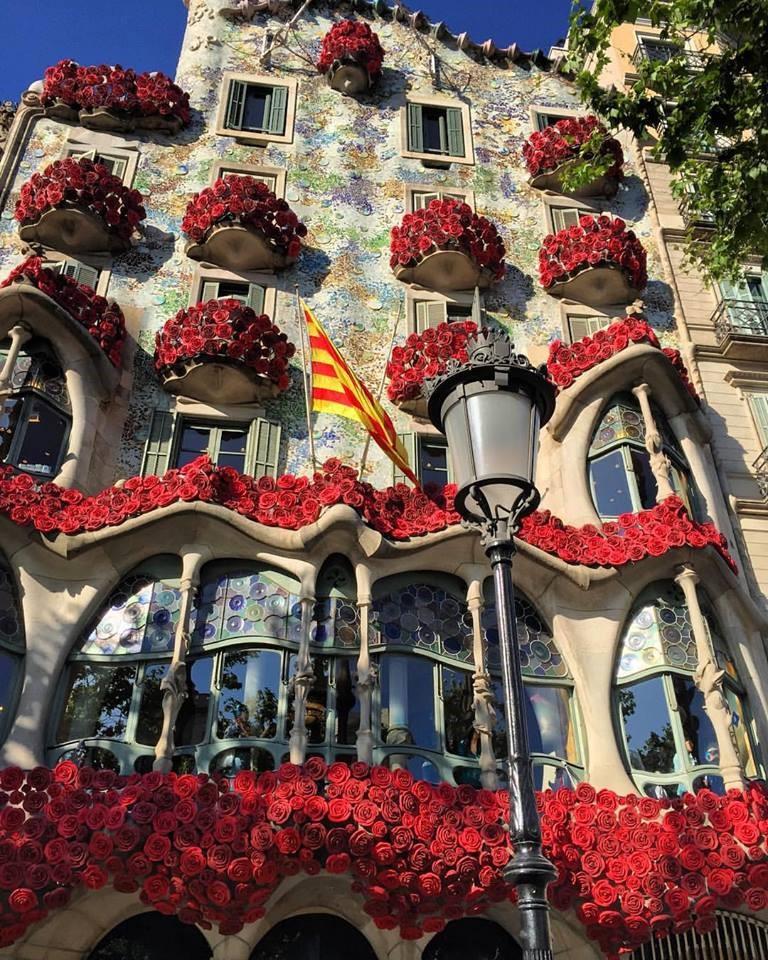 Nuestras vistas; Casa Batlló 4