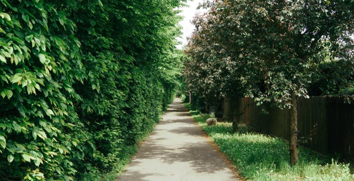 Casas con jardín o como vivir en plena naturaleza en tu propia casa 1
