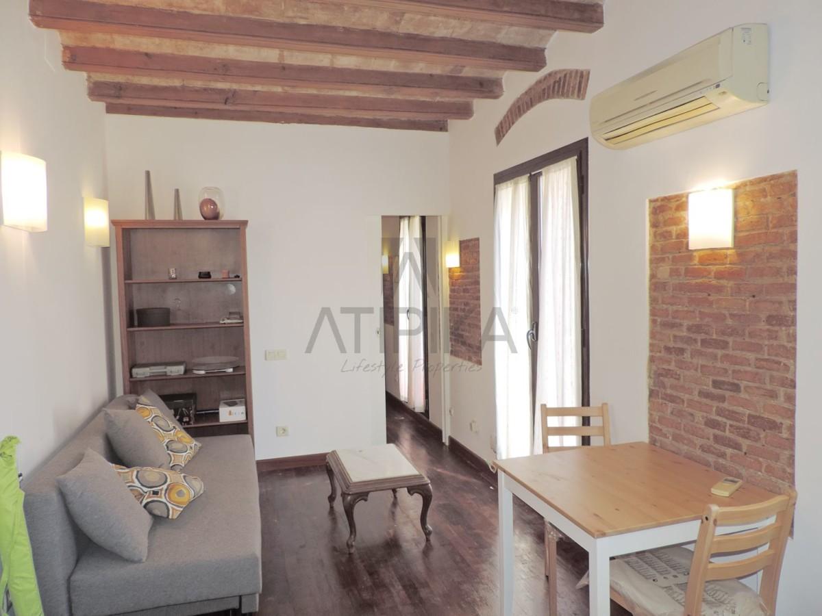 Acogedor apartamento muy luminoso de una habitación con inquilino junto a la playa de 'La Barceloneta' 1